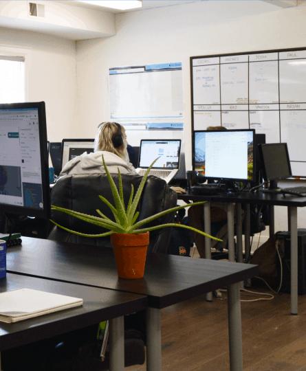Custom Web Solutions in Toronto