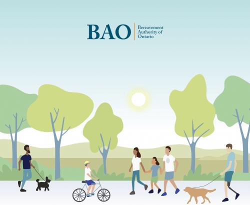 BAO - Toronto Custom Web Design