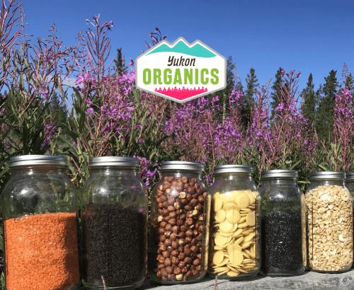 Yukon Organics - Custom Website Design Toronto